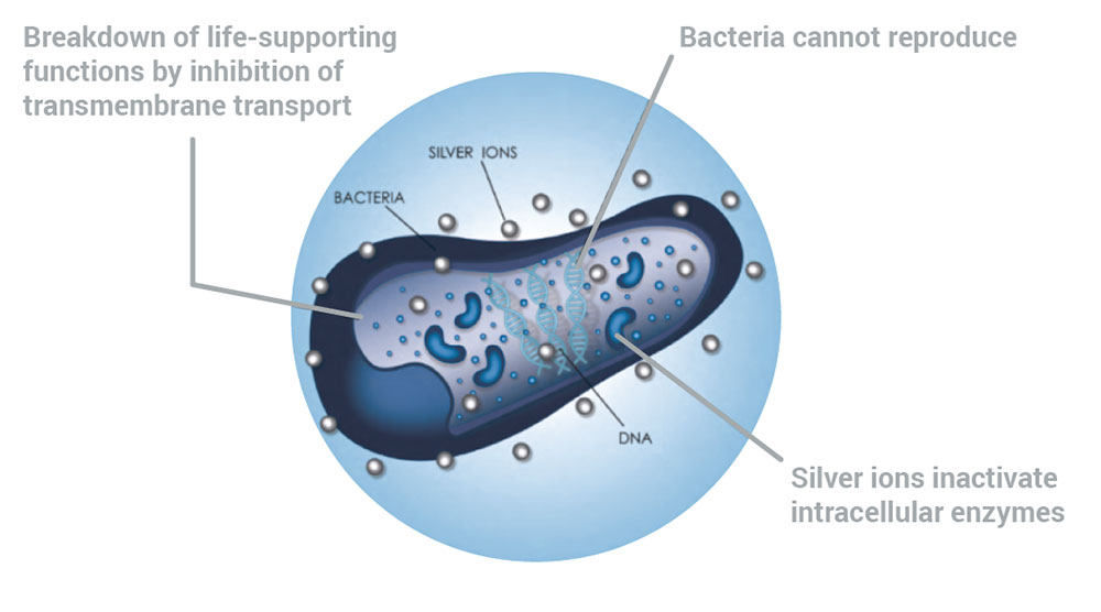 AIONX Antimicrobial Technologies, Inc. | How Metal Ions Kill Bacteria